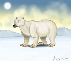 Polar Bear by Louisetheanimator