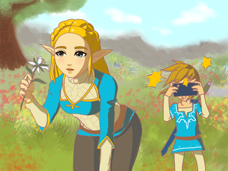 Link, the photographer by tvm123456