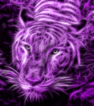 Purple Tiger Fractals by dizzygirllovesyou