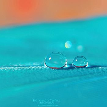 Two drops by FrancescaDelfino