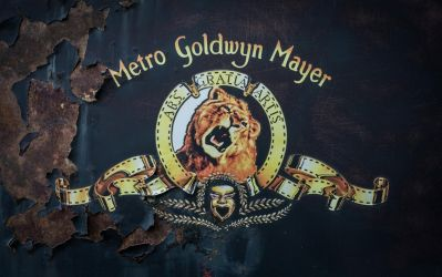 Mgm Wp by napoca
