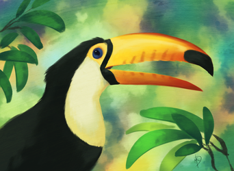 Toucan by Firequill