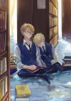 USUK-library by LitLoud