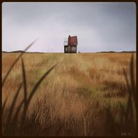 Old House by betsybauer