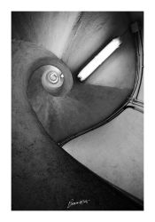the heart in the staircase by bosniak