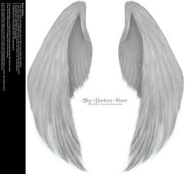 Furred Feathered Wings - White PNG by Thy-Darkest-Hour