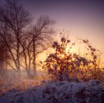 Sunset snow scence STOCK by needanewname
