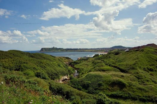 Scarborough Bay and Castle by GaryTaffinder