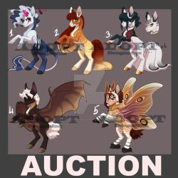SALE Adopt|AUCTION 5 Ponies {closed} by DragonFoxAdopts