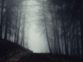 Strolling Ghosts by Weissglut