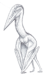 A more accurate Hatzegopteryx by The---Other---One