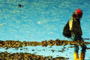Reflection of by dimitarmisev