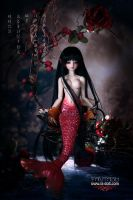 Loong soul doll - Siren - Lotus Limited(60sets) by LoongSoul