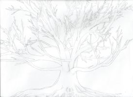 Oak Tree Drawing by laurenlilly757