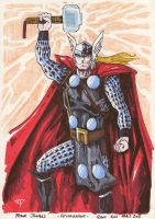 THOR Paris Comic Con 2011 by guillomcool