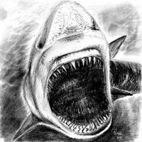 Shark Fright-mare by philippeL
