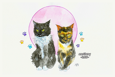 :: Watercolors :: Cats GIFT by maritery-san