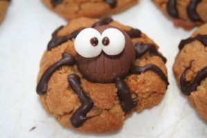 Spider Cookies by battybaby
