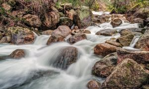 The Flow of Eurobin by MarkLucey