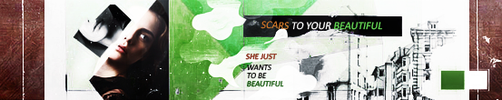 Scars To Your Beautiful by Allymathea