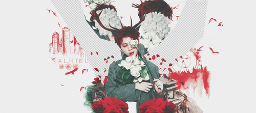 Junhyung  - Old Red Flower by Ralhiel