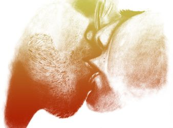 Kiss-Warm by Evinfowler
