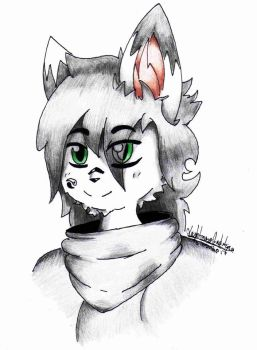 Vex The Husky (Headshot) by LightnessAuditore