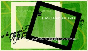 polaroid brushes by crazykira-resources