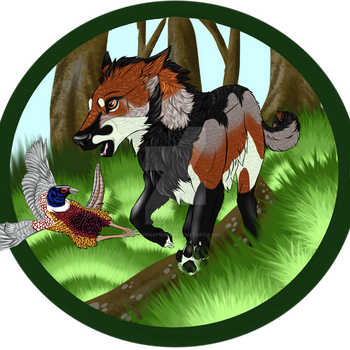 Sly hunting Pheasant by Abi-Gale