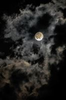 moon by Salafte