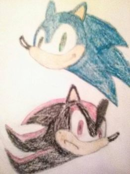 Sonic and Shadow Heads Sketch by Nikkigamer