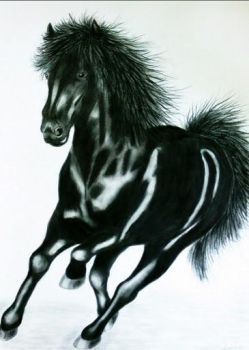 Black Horse by Rutger1990