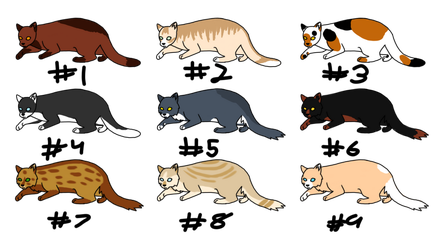 Adopts 1 by RavenfeatherOfRC
