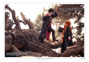 Harry Potter: James and Lily by ihitoq
