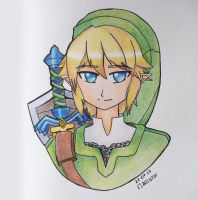 Link - Twilight Princess by Clarentia