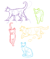 Anatomy practice- Cats by candracar272