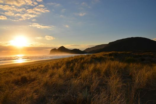 Bethells Beach by BenCrowlePhotography