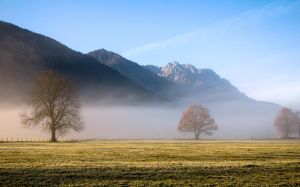 Cold autumn day by mutrus