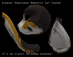 Kinzart Productions Domestic cats by DarkEcoKat