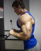 The Tricep Pushdown by DRCh