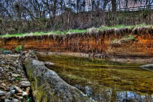 river bank in winter by Schwingding