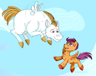 Flying lessons by Shokly
