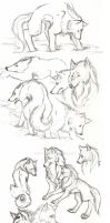 Wolf Sketches by owopyre
