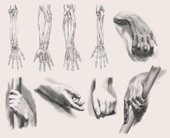 Hands 2 by cury