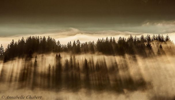 Rays of light by Annabelle-Chabert