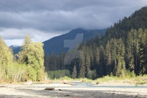 Hoh river 5 by seancfinnigan