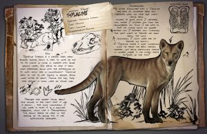 Thylacine by The-Beauty-With-In