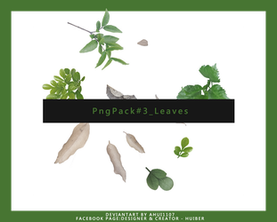 PNG PACK #3_Leaves by ahui1107