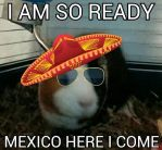 I'm going to Mexico baby by ScarabsCorner