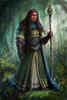 Half-Elf Wizard by joeshawcross